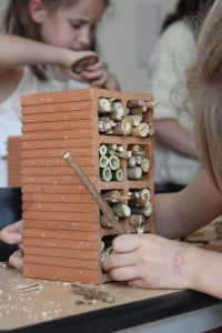 Fabrication de nichoirs à abeilles solitaires